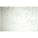 comprar textura para teto de sala Aricanduva